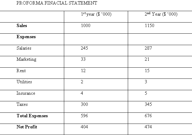 proforma financial statement